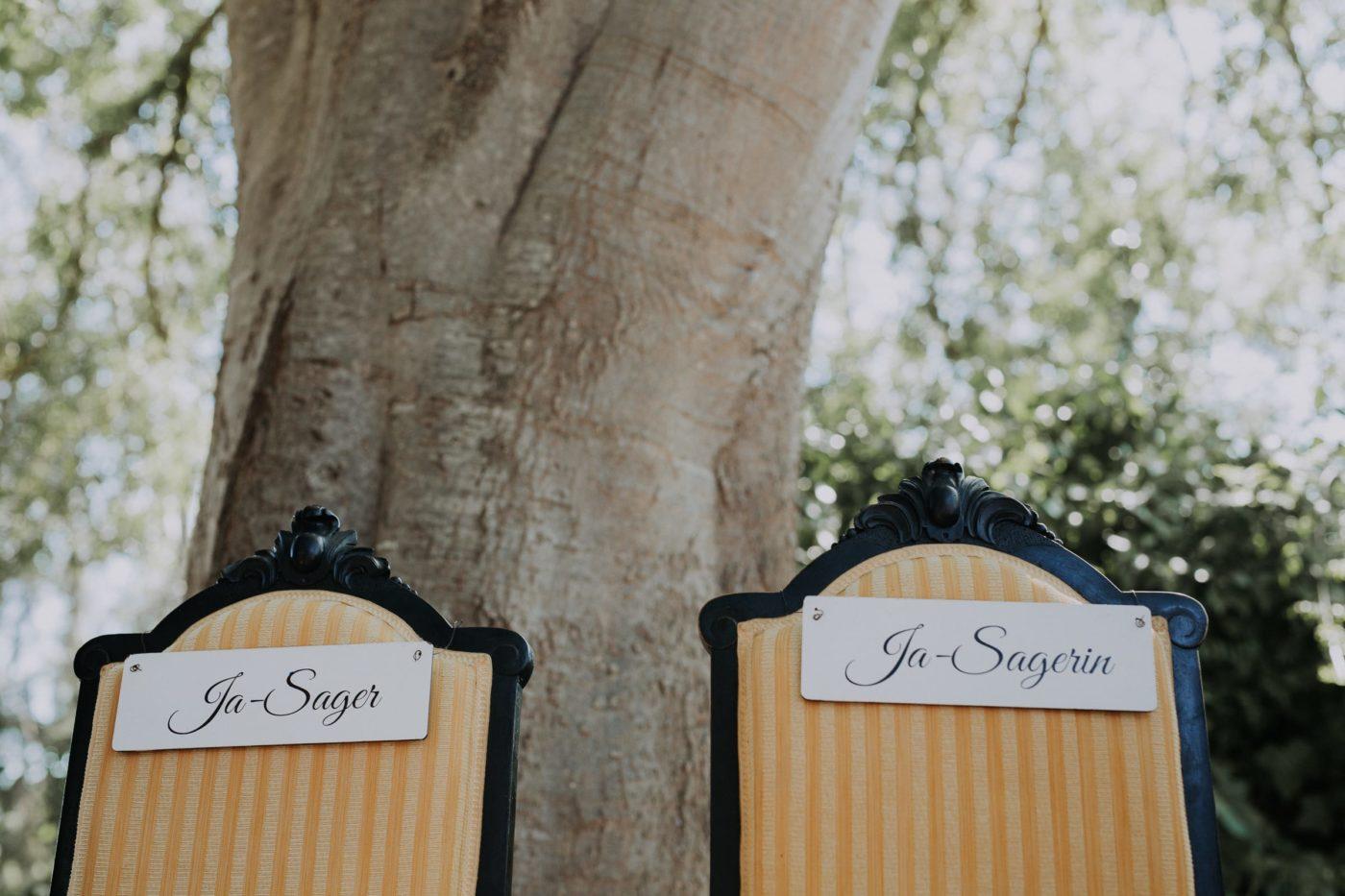 Foto von den Brautpaarstühlne unter einem Baum.